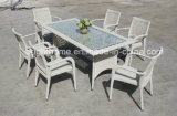 Modern Style Dining Chair and Table/Dining Room Set/Wicker Furniture (BP-3031)