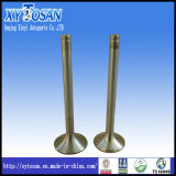 Engine Valve for Steyr Wd614/ Iveco 2.5 (ALL MODELS)