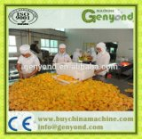 Hot Sell Canned Fruit Production Line