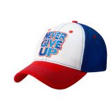 Wholesale Custom 3D Embroidery Baseball Cap (A333)