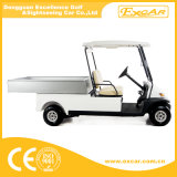 2 Seater Electric Utility Carts for Sale