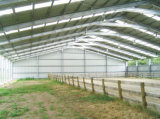 Prefabricated Steel Structure Shed Horse Riding Arena