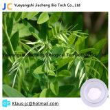 Plant Extract Matrine Powder Sophora Extract 519-02-8