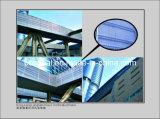 Aluminum/Aluminium Perforated Panel with High Quality