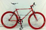 Sh-Fg001 700c Steel Site Running Bike Sport Bike
