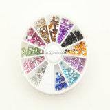Nail Art Rhinestone Wheel Mini Rhinestone for Nail Beauty (D19)