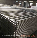 Best Price Galvanized Heavy Duty 5 or 6 Bars Used Livestock Panels, Cattle Fence, Cattle Panel
