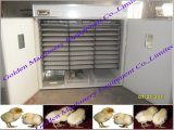 Poultry Equipment Digetal Chicken Egg Incubator Incubating Hatching Hatchery Machine
