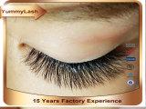 Wholesale Best Quality Trade Exported 3D Mink False Eyelashes