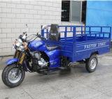 China 150cc Gasoline Open Motor Cargo Trike (SY150ZH-B1)