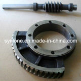 OEM Casting/Forging Steel Worm Gear and Worm Shaft