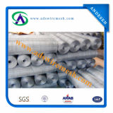 Hot-Dipped Galvanized Square Wire Mesh (Hot sale & factory price)