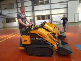 Hot Selling Compact Small Crawler Tractor with CE