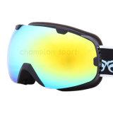 Snow Boarding Goggles (SNOW-2801)