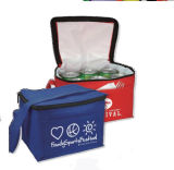 Custom Non Woven Cans Thermal Frozen Food Lunch Picnic Bag