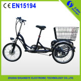 2015 Green Eletric Tricycle with CE Certificate