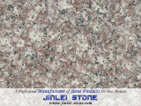 Misty Mauve G664 Granite Tiles for Floor/Wall/Kitchen Countertop