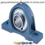 Professional Manufacturer of Pillow Block Bearing (UCP212)