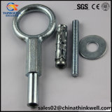 Galvanized Forged Steel Scaffolding Rings Eye Expansion Bolts with Anchor