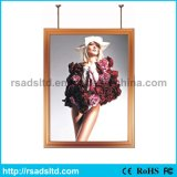Double Sided Advertising Display LED Light Box Sign