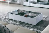 Wooden Leisure MDF Coffee Table Furniture (CJ-149)