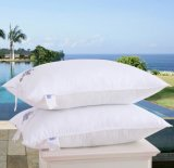 Hotel Feather and Down Standard Size Pillow Set (DPF10303)