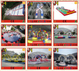 Various of Track Type Infltable Race Track for Zorb Ball Bowing