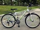 26 Inch Downhill Mountain Electric Bike