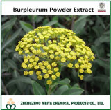 Tcm Chinese Bupleurum Powder Extract with Saikosaponins for Antifever