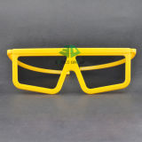 Plastic Linear Polarized 3D Glasses (SNLP 010P)