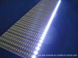 Manufacture SMD 5050 DC 12V LED Strip for Outdoor