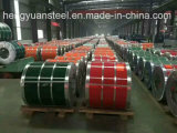 0.125-1.0/Within 1250mm Ral Colors Prepainted Galvalume Steel Coil PPGL