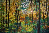 Beautiful Forest on The Oil Painting