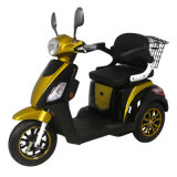 China Functional Electric Mobility Tricycle for Disabled