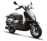 Fashion Popular 50cc EEC for Scooter (SP50QT-11)