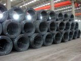 Hot Sale, Standard 1008b Hot Rolled Wire Rod