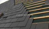 Pure Natural Black Slate Roofing Tile/Roof Tile (W-XZ03BY)