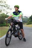 Mini E-Bike E Mountain Bike