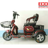 Leisure Passenger and Cargo Et501b Electric Tricycle 650W