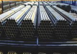 Premium Quality Seamless Stainless Steel Ss Tube