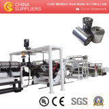 Plastic Pet Sheet Extrusion Line Machine