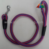 Good Blue and Red Round Rope Indestructible Dog Leash