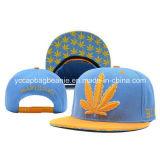 Fashion Snapback Hat, 3D Emb Snapback Hat, Hip Hop Hat