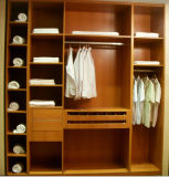 Customerized Modern Design Wardrobe (Br-Cr004)