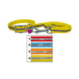 Reflective Color Dog Leash with Collars Dp-Cp1257
