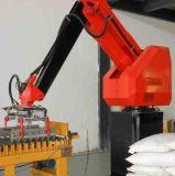 China Palletizing Robots with CE