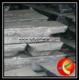 SGS Approved and Competitive Price 99.994% Lead Ingot
