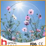 1.499 Single Vision 65mm Optical Lens Hmc