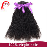 Unprocessed Human Hair Kinky Curly Virgin Remy Brazilian Hair Extension