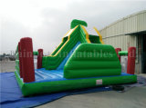 Outdoor Inflatable Bouncy Jumping House/Inflatable Castle Inflatable Combo for Kids